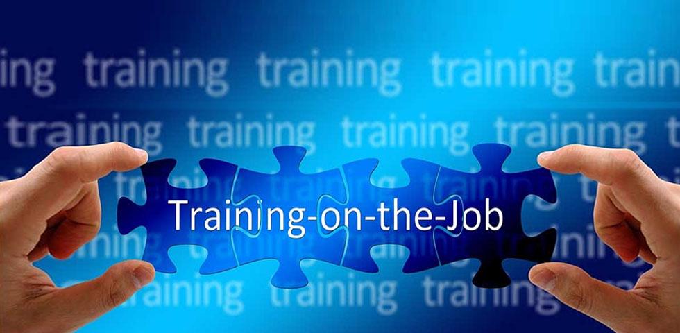 training_on_the_job